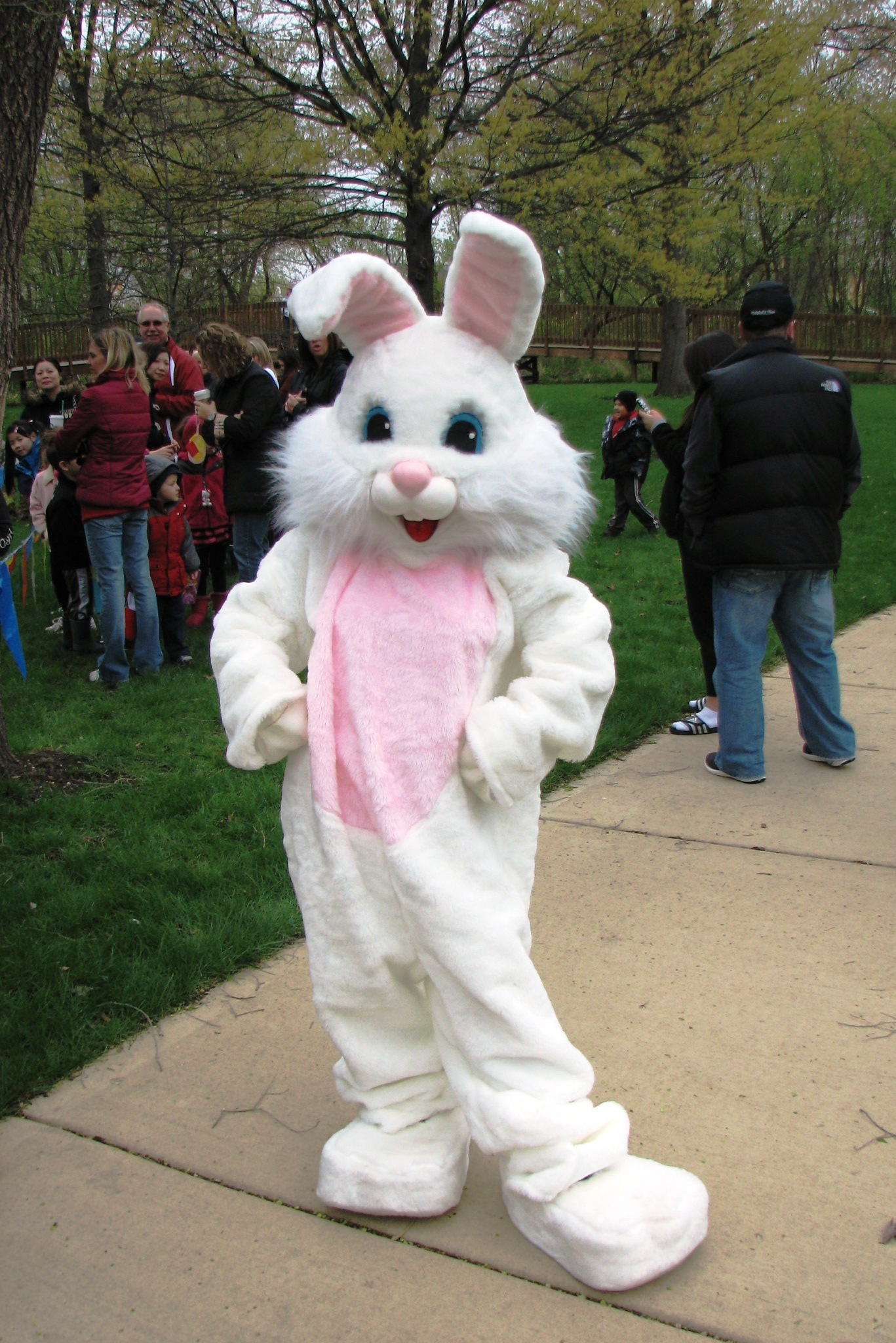 Man Dressed as Easter Bunny