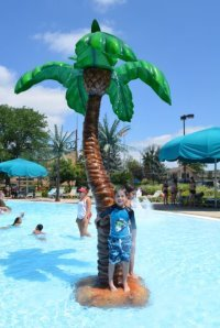 Boy on the fake palm tree in the main pool